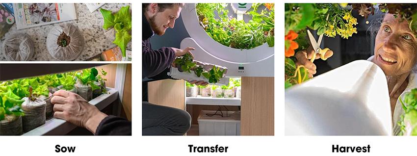 """Bất ngờ với """"vườn"""" rau nhỏ xinh, tiện ích ngay trong phòng khách - Ảnh 7."""