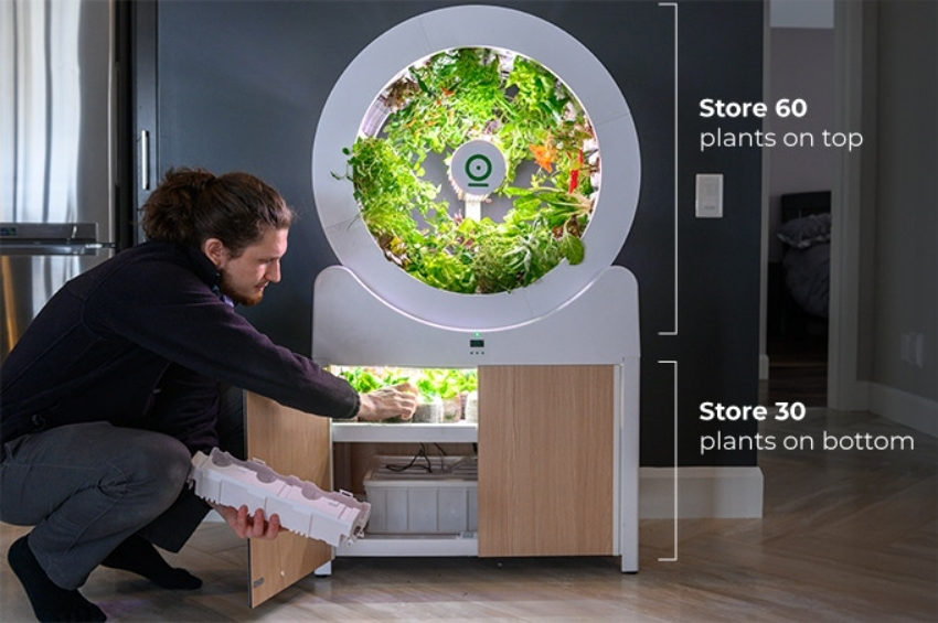 """Bất ngờ với """"vườn"""" rau nhỏ xinh, tiện ích ngay trong phòng khách - Ảnh 3."""
