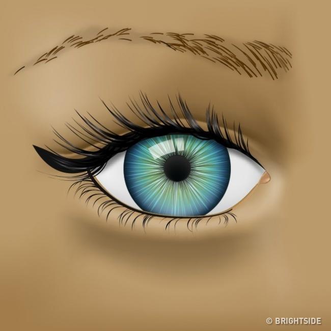 Nhận biết tình trạng sức khỏe qua những dấu hiệu của mắt - Ảnh 3.