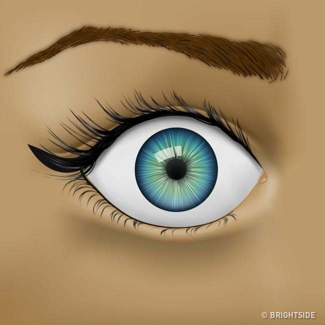Nhận biết tình trạng sức khỏe qua những dấu hiệu của mắt - Ảnh 5.