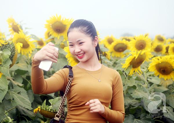 Các thiếu nữ hào hứng khoe sắc xinh đẹp cùng cánh đồng hoa hướng dương rực rỡ - Ảnh 4.