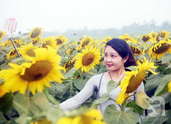 Các thiếu nữ hào hứng khoe sắc xinh đẹp cùng cánh đồng hoa hướng dương rực rỡ - Ảnh 10.