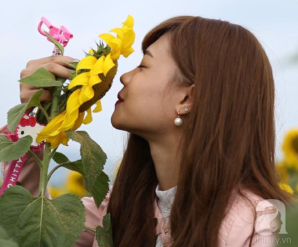 Các thiếu nữ hào hứng khoe sắc xinh đẹp cùng cánh đồng hoa hướng dương rực rỡ - Ảnh 8.