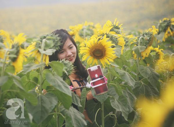Các thiếu nữ hào hứng khoe sắc xinh đẹp cùng cánh đồng hoa hướng dương rực rỡ - Ảnh 11.