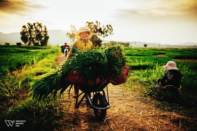 5 địa điểm sẽ trở thành thiên đường du lịch cho giới trẻ Việt trong năm tới - Ảnh 11.