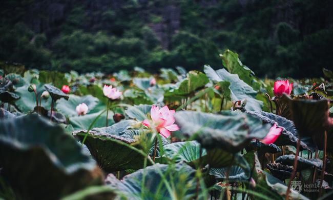 5 địa điểm sẽ trở thành thiên đường du lịch cho giới trẻ Việt trong năm tới - Ảnh 26.