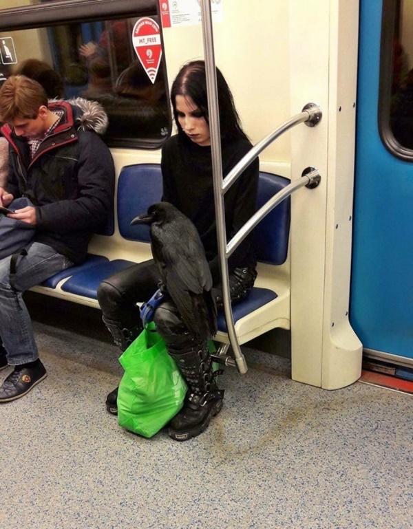 Nếu không muốn trở thành trò cười cho thiên hạ chớ diện đồ kiểu này đi phương tiện công cộng - Ảnh 1.