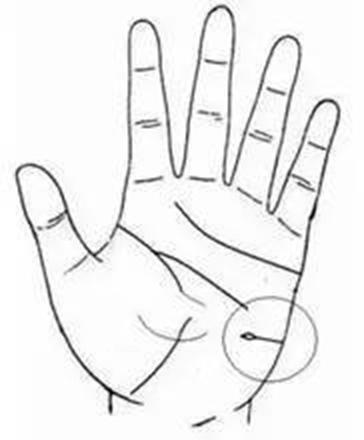 Trên tay mà có đường này thì nhân duyên không những tốt mà lại còn nhiều quý nhân phù trợ - ảnh 6