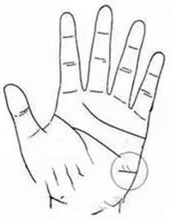 Trên tay mà có đường này thì nhân duyên không những tốt mà lại còn nhiều quý nhân phù trợ - ảnh 4
