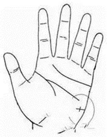 Trên tay mà có đường này thì nhân duyên không những tốt mà lại còn nhiều quý nhân phù trợ - ảnh 5