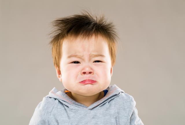 Các dấu mốc phát triển ngôn ngữ và nhận thức trẻ cần đạt được khi lên 2 tuổi - Ảnh 1.