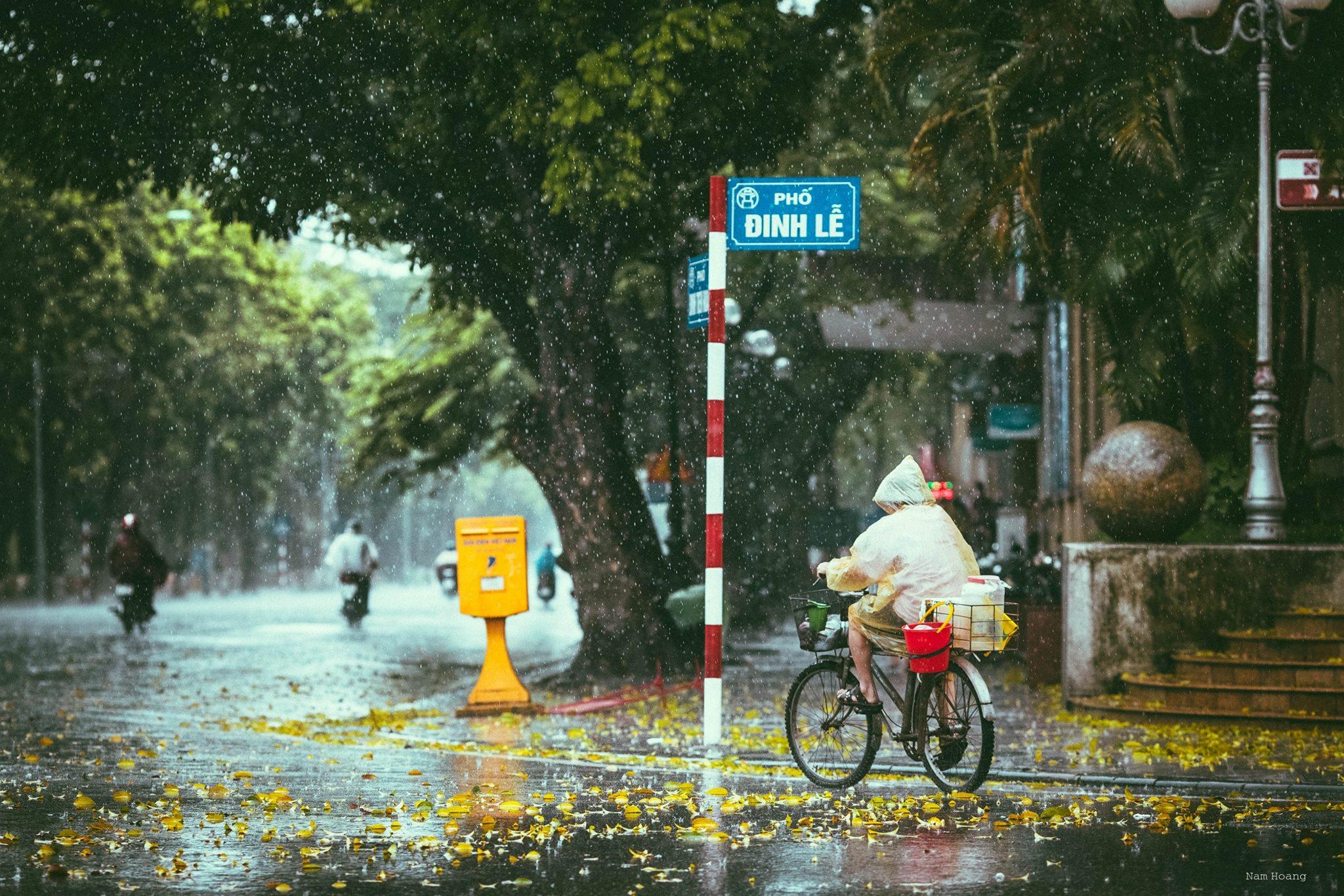 Những bức ảnh tuyệt đẹp này sẽ khiến bạn nhận ra, trong mưa, cuộc