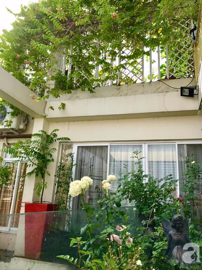 Khu vườn trên sân thượng rộng tới 200m² bạt ngàn rau quả sạch của nữ doanh nhân Sài Thành - Ảnh 5.