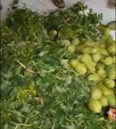 Xôn xao xe chở rau củ quả thối bị bắt quả tang khi chuẩn bị đưa vào trường học tiêu thụ - Ảnh 1.