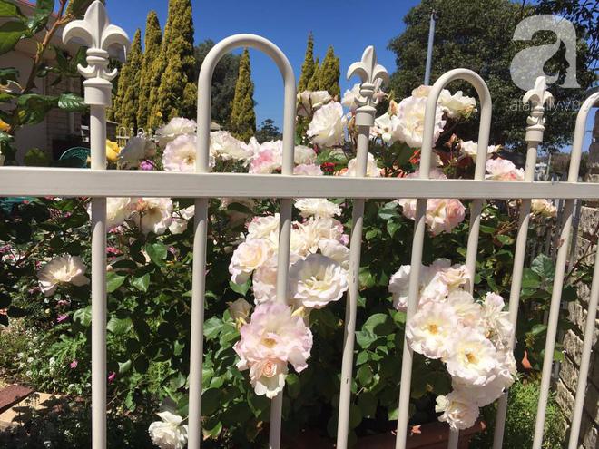 Mất 2 năm gây dựng, vợ chồng người Việt đã biến không gian sống của mình thành ngôi nhà hoa hồng đẹp ngẩn ngơ - Ảnh 5.