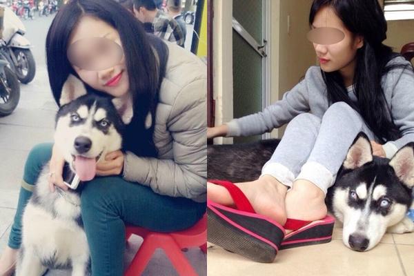 Cho bạn thân mượn chó cưng để chữa trầm cảm, cô gái chết đứng khi nghe tin... bạn bán luôn chó lấy tiền tiêu xài - Ảnh 1.