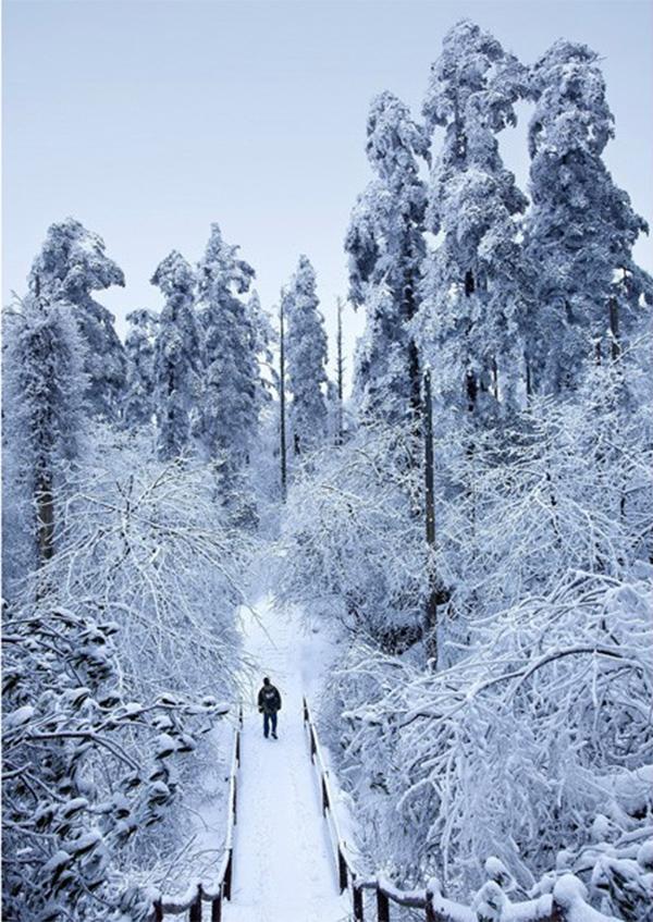 Tuyết phủ trắng núi Nga Mi - Ảnh 6.