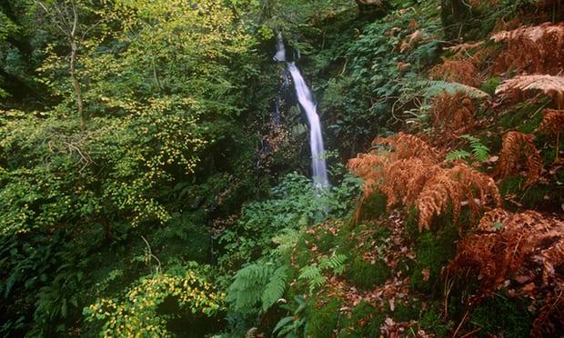 Một vòng Trái đất những địa điểm tuyệt đẹp để du ngoạn mùa thu - Ảnh 6.