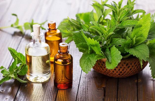 Nếu bị viêm mũi, viêm xoang: Đây là bài thuốc siêu dễ giúp bạn trị bệnh tại nhà nhờ loại lá quen thuộc - Ảnh 3.