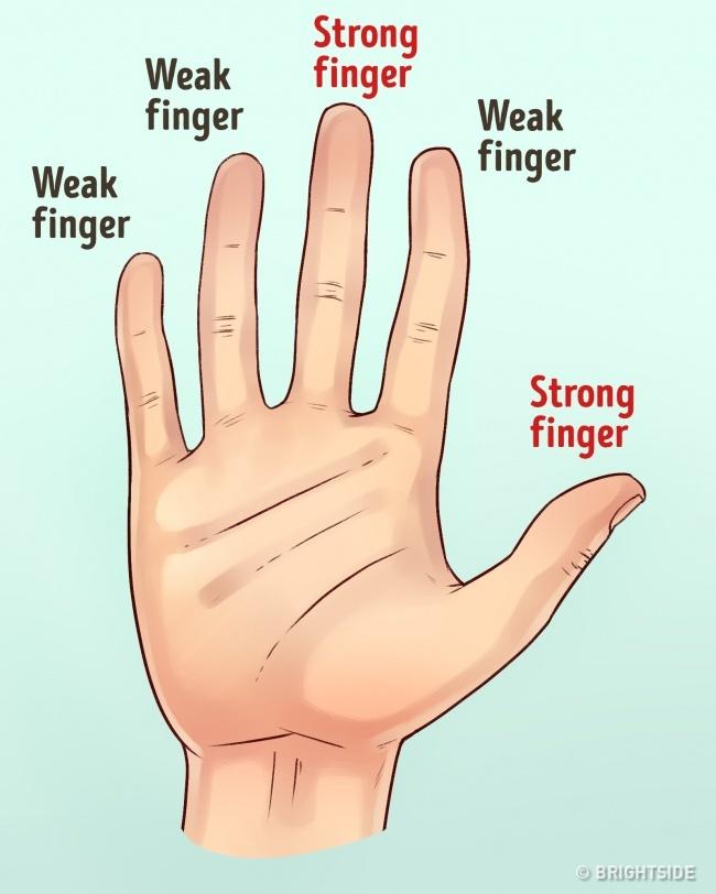 Lật bàn tay một người, chỉ cần để ý 3 yếu tố thôi là đã biết tính cách họ ra sao - Ảnh 1.