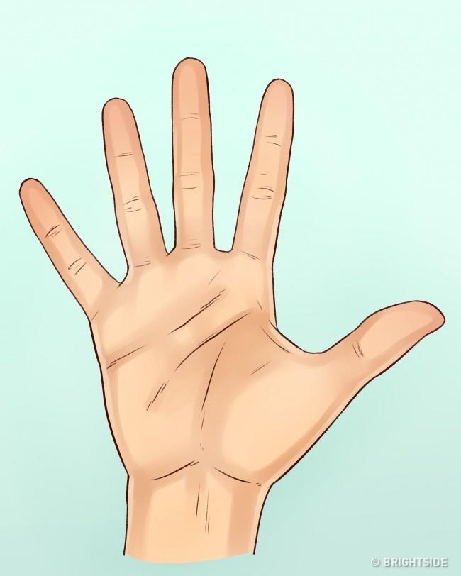 Lật bàn tay một người, chỉ cần để ý 3 yếu tố thôi là đã biết tính cách họ ra sao - Ảnh 3.