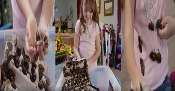 Kinh ngạc bé gái 8 tuổi nuôi hàng nghìn con gián làm thú cưng - Ảnh 1.