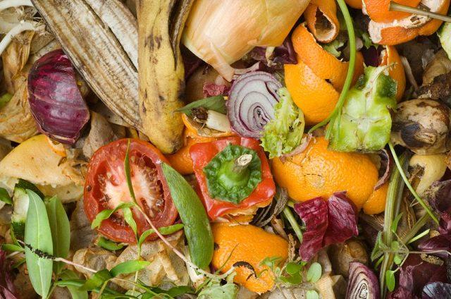 Đừng vội vứt bỏ đồ thừa trong bếp đi, chúng vô cùng hữu ích khi được sử dụng trong chăm sóc cây - Ảnh 11.