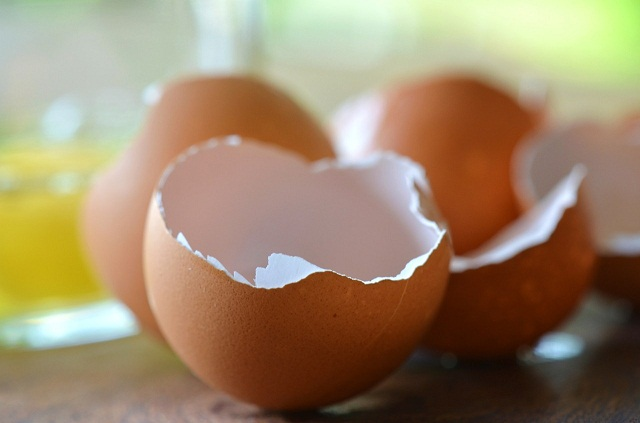 Đừng vội vứt bỏ đồ thừa trong bếp đi, chúng vô cùng hữu ích khi được sử dụng trong chăm sóc cây - Ảnh 2.