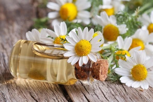 Những lợi ích sức khỏe to đùng của hoa cúc - Ảnh 5.