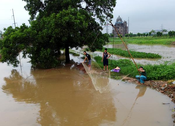 Sau mưa bão, người Hà Nội cất vó đánh cá cạnh các Khu đô thị mới - Ảnh 1.