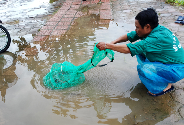 Sau mưa bão, người Hà Nội cất vó đánh cá cạnh các Khu đô thị mới - Ảnh 5.