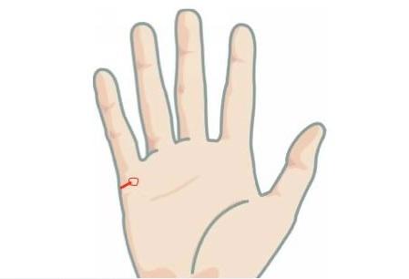 """Kiểu <a target='_blank' href='http://www.phunuvagiadinh.vn/tag/duong-tinh-duyen'>đường tình duyên</a> tiết lộ hôn nhân đến """"đầu bạc răng long"""" - Ảnh 1."""