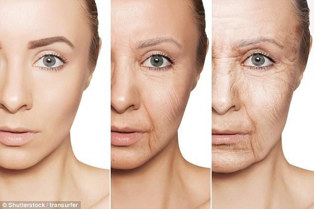 Công nghệ đột phá này sẽ làm trẻ hóa các tế bào già nua, giúp con người chống lại lão hóa - Ảnh 3.