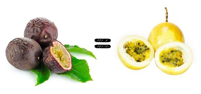 Muốn mua dứa ngon phải nhìn vào lá, còn bơ ngon thì phải nhìn vào… - Ảnh 7.