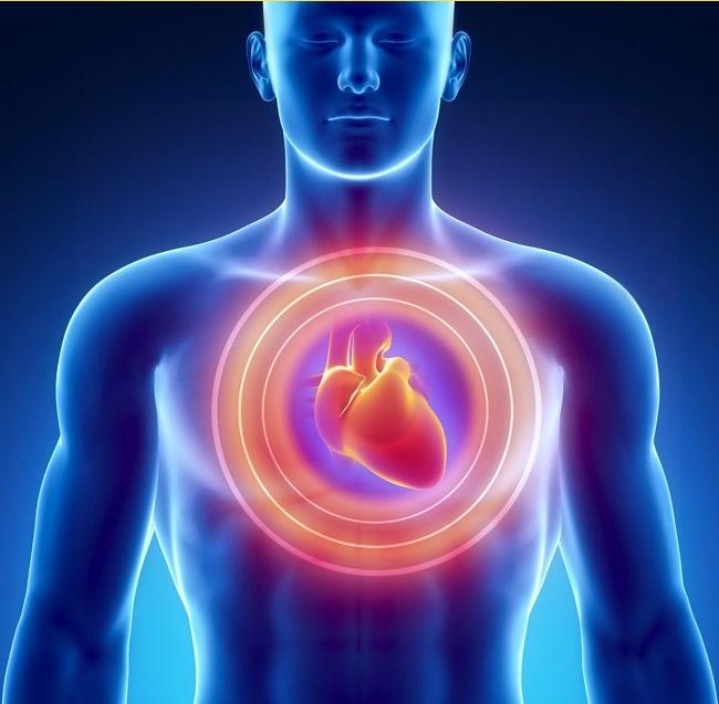 1 tháng trước khi cơn đau tim, cơ thể bạn sẽ cảnh báo với 7 tín hiệu này - Ảnh 7.
