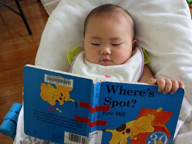 Học người Mỹ cách dạy trẻ yêu thích đọc sách - Ảnh 1.