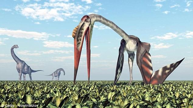 Thì ra Trái đất từng có loài sát thủ trên không to như chiếc máy bay và ăn thịt cả khủng long - Ảnh 2.