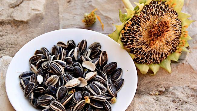 Nhà nào cũng ăn 3 loại hạt này ngày Tết mà không biết tác hại của chúng với sức khỏe - Ảnh 2.