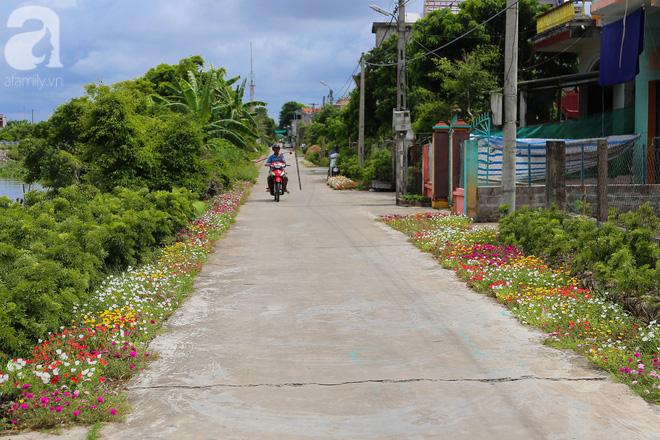 Đẹp ngỡ ngàng những con đường làng rực rỡ màu hoa - Ảnh 19.