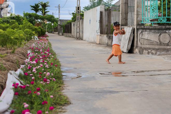 Đẹp ngỡ ngàng những con đường làng rực rỡ màu hoa - Ảnh 8.