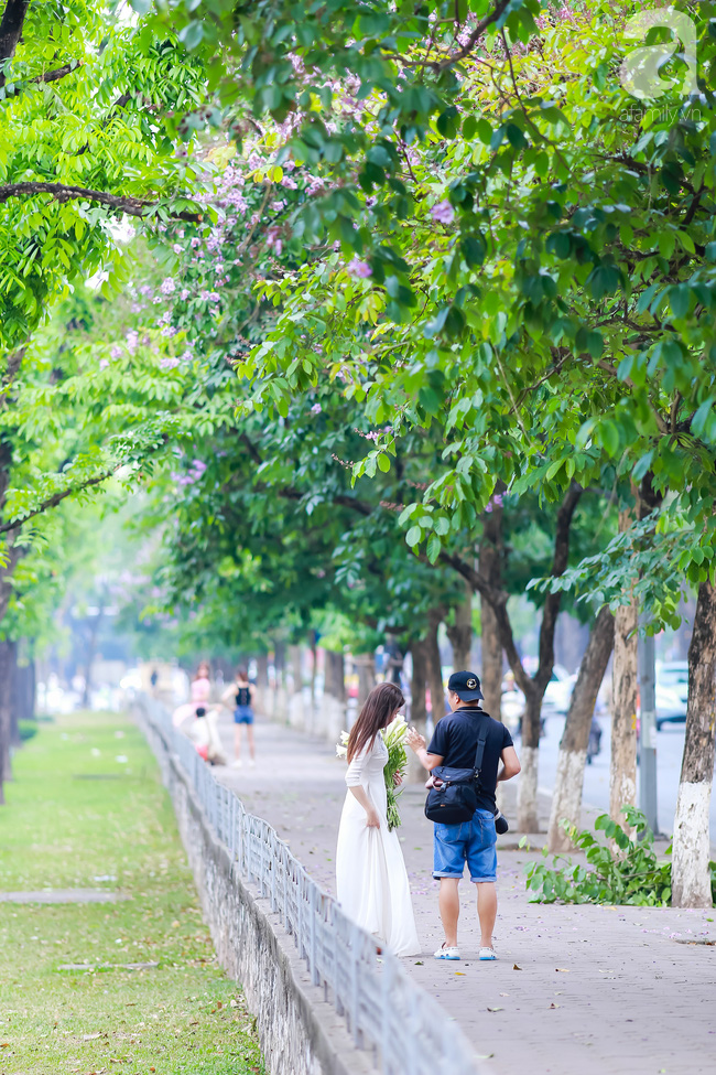 Sắc tím hoa bằng lăng khiến Hà Nội thơ mộng hơn giữa mùa hạ cháy - Ảnh 11.