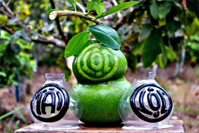 5 loại trái cây khắc chữ giá tiền triệu vẫn nhiều người tìm mua dịp Tết - Ảnh 1.