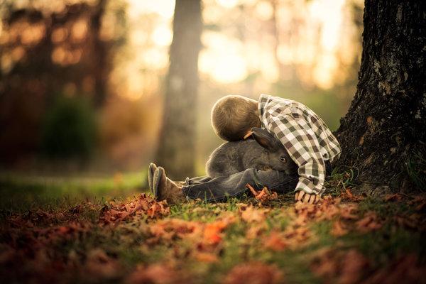 Phát hờn với bộ ảnh tuyệt đẹp bố chụp con trai trong nông trại - Ảnh 4.