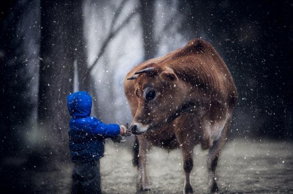 Phát hờn với bộ ảnh tuyệt đẹp bố chụp con trai trong nông trại - Ảnh 5.