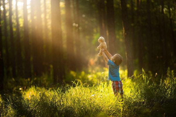 Phát hờn với bộ ảnh tuyệt đẹp bố chụp con trai trong nông trại - Ảnh 8.