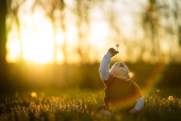 Phát hờn với bộ ảnh tuyệt đẹp bố chụp con trai trong nông trại - Ảnh 12.