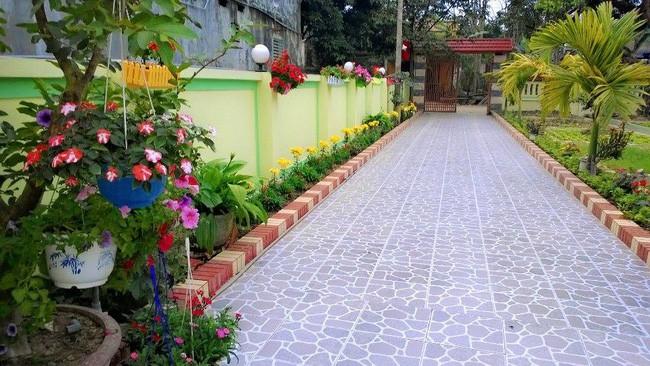 Khu vườn rộng gần nghìn m² đầy hoa và rau xanh của cô giáo dạy toán - Ảnh 5.