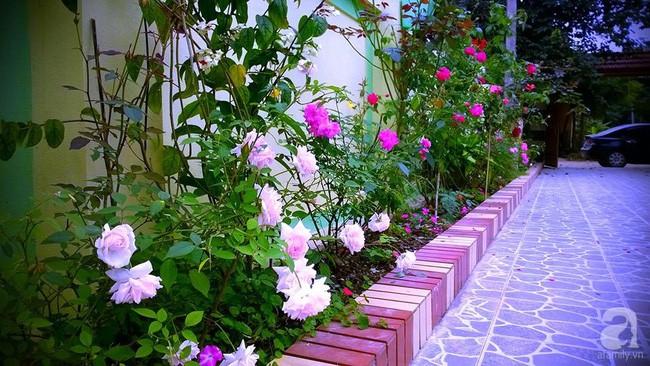 Khu vườn rộng gần nghìn m² đầy hoa và rau xanh của cô giáo dạy toán - Ảnh 10.
