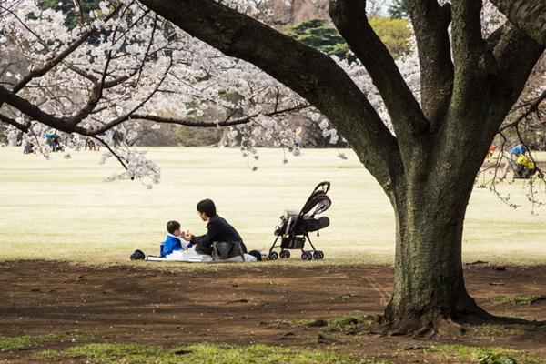 Sân chơi trẻ em thôi cũng ẩn chứa những bài học sâu sắc của người Nhật - Ảnh 3.