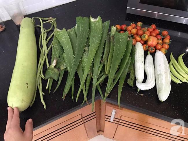 Sân thượng 10m² xanh mướt của bà mẹ dám bỏ sự nghiệp để ở nhà trồng rau, chăm con - Ảnh 19.